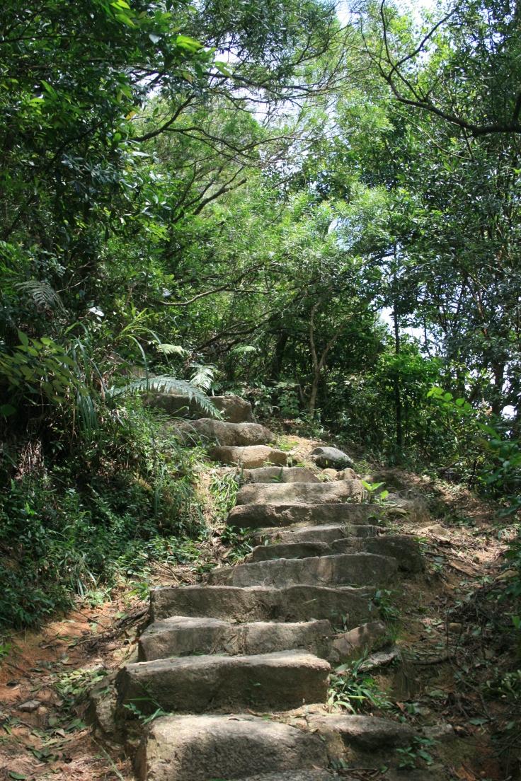 Lion rock stair case