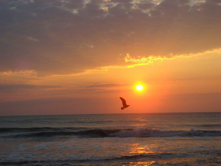 Sunrise in North Carolina