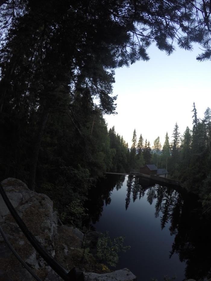 Lillehammer woods