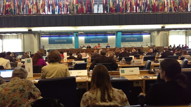 CFS plenary session
