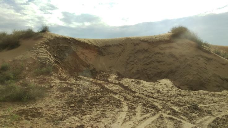 The sand dunes of the Thar desert