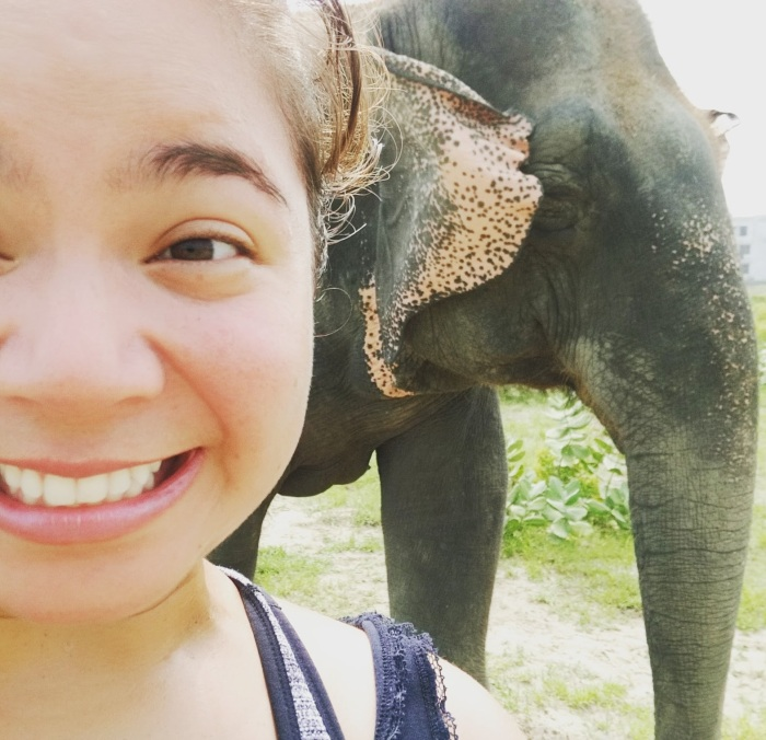 Me falling love with Maya, the elephant