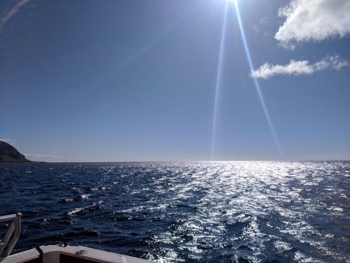 Happy ocean!