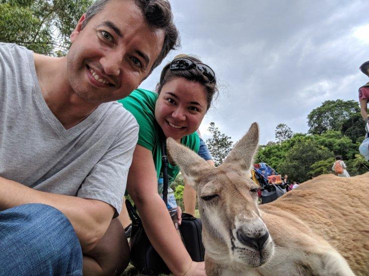 Wallaby and walla-us.