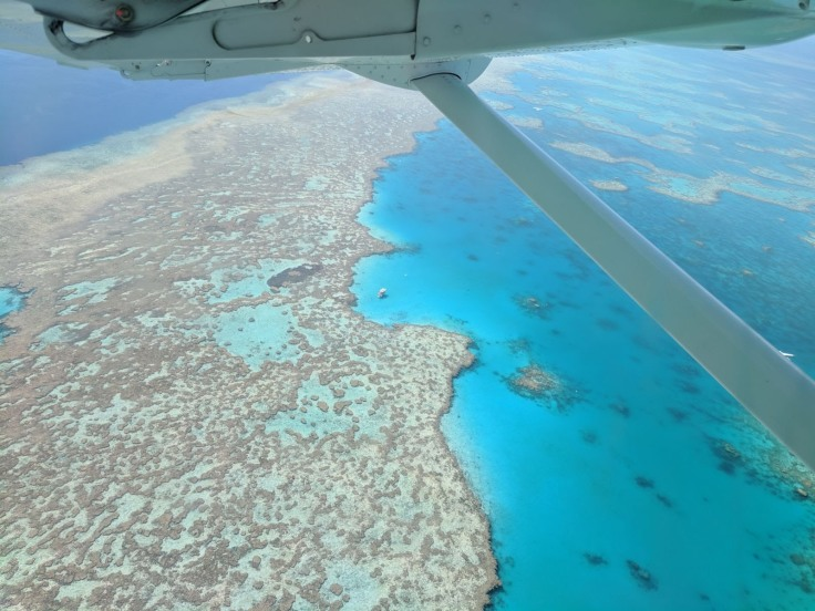 Great Barrier Reef, window view from above