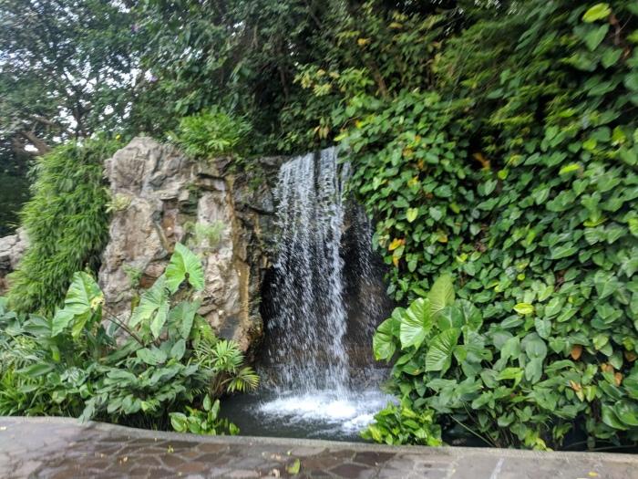 Botanic garden waterfall