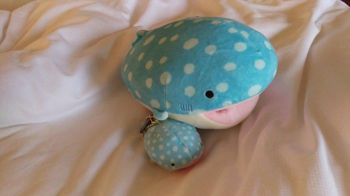 Sings, the whale and bundle, his companion