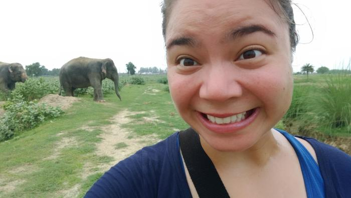 Me at an elephant sanctuary in Agra, India